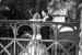 blackbrook-house-wedding-photography-00044